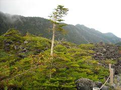 ピラタス蓼科より、北八ヶ岳の景色を眺める!