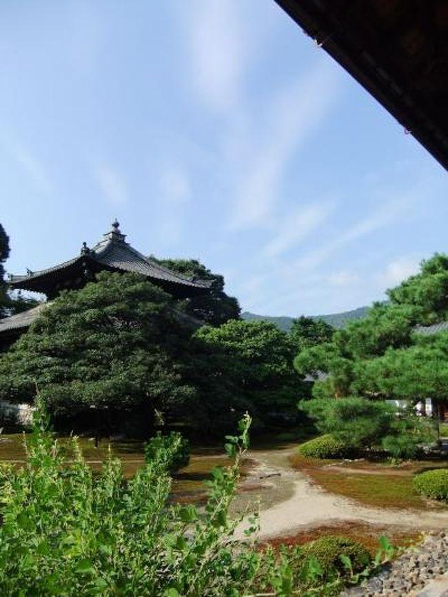図書館で宿坊の本に出会い興味をもっていたところ。<br />たまたま、NHK「直伝和の極意」で宿坊が取り上げられ、<br />これは!と居ても立ってもいられなくなり<br />仕事が一段落するであろう9月の連休に京都行きを決めました。<br />何処にしようか、かな〜り迷った結果<br />鹿王院と智積院会館に泊めていただきました。
