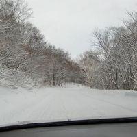 福島の白濁湯 玉子湯で雪見露天!  2日目 の、に。 新野地温泉最高編