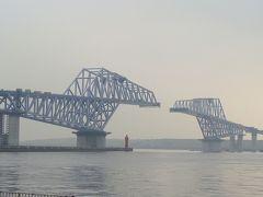 江東区 若洲公園から見る建設中の大橋