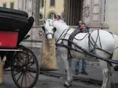 大人のたんけん  中世の宮殿 : フィレンツェ?