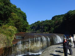 2010.10.23秋の群馬に紅葉を求めて 前編☆多々良沼~吹割の滝