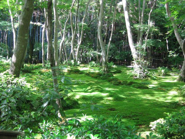 <br />初夏の嵯峨野を夫婦でぶらぶら。<br /><br />5月最後の休日、祇王寺と滝口寺でのんびりまったり過ごしました。<br /><br />