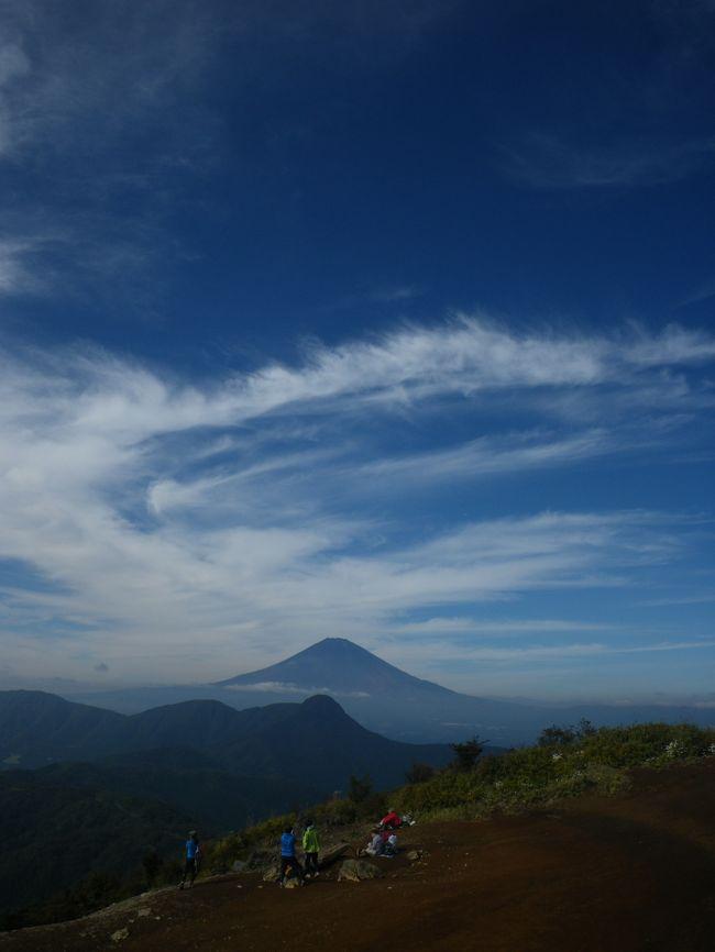 今日も訓練登山デス。<br />知り合いにオススメされた「明神ヶ岳」と「明星ヶ岳」へ。<br /><br />明神ヶ岳は神奈川県南足柄市と箱根町の境にある標高1169mの山で<br />箱根外輪山の一つ。<br />山頂からは富士山が見れるらしい。<br /><br />お天気にも恵まれ、とーっても素敵な山行になりました^^<br /><br />