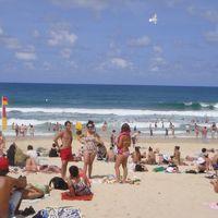 初上陸★ゴールドコースト大満喫の個人旅行★【1日目】~到着!HOLIDAY INN SURFERS PARADISE と土ボタルツアー~