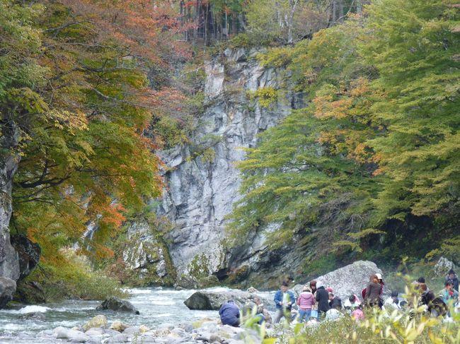 会社の皆さんと芋煮会をしてきました。<br /><br />場所は、秋保温泉の温泉街を少し通り越したところにある「木の家」ロッジ。<br />天守閣自然公園のそばにあります。<br />http://www.akiu.net/kinoie/<br /><br />前日まで雨が続き川の流量が増加していたので、いも煮は河原ではやらずに借りたロッジのそばで楽しみました。<br /><br />紅葉は本格的な色つきまではもう少しといった段階でしたが、<br />ところどころ色付いた木々と川の流れの景色がとてもきれいでした。<br /><br />でも空気もきれいでとても気持ちよかったです。<br /><br />いも煮の方も、鍋だけではなく、バーベキューを織り交ぜ、いろいろな味を楽しみました。<br /><br />帰りは、おはぎで有名になっている「佐市」スーパーに立ち寄り、おはぎを買って帰りました。<br /><br />こちらも甘すぎず(あんこ)おいしかった!<br />