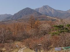 清里★秋を味わうドライブ★2010