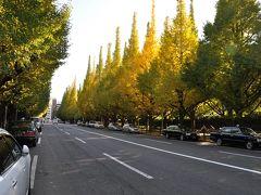 「 色づき始めた代々木公園~神宮外苑 散策 」2010