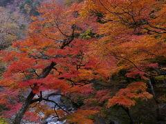 2010.11.14奥秩父・中津峡の紅葉と丸神の滝