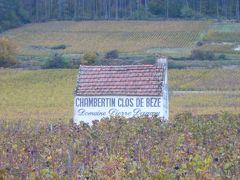 黄金の丘でブルゴーニュワインを識る旅(その2)~コート・ド・ニュイとボーヌ~