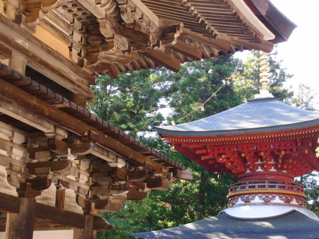 アイラブ仏像めぐりで、奈良へ。(岩船寺は京都府ですが・・・)<br />平城遷都1300年祭で祈りの回廊と題して、奈良県内各地(一部京都)で秘宝秘仏の特別開帳が行われている。<br />公私共に多忙でご開帳の秋なのに奈良を訪れることができず、今年はダメかとあきらめかけていたが、なんとか間に合った。<br />圓成寺の紅葉も楽しめ、満足満足。<br /><br />この日の行程、<br />夜支布山口神社、南明寺、岩船寺、圓成寺、長岳寺