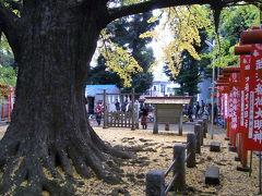 秋色の東京散歩:護国寺あたり