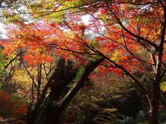 2010.11.20秋の北茨城・紅葉巡り  前編☆花貫渓谷