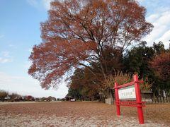 道鏡最期の地・栃木県下野薬師寺跡に行ってみた