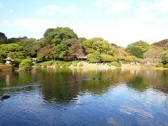 昔の江戸と今の東京が交差する美しい新宿御苑