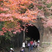 近くに行きたい♪ 「秋の愛岐トンネル群一般公開を訪れる」