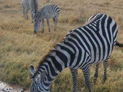 始めてのひとり旅、inタンザニア