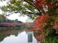 江戸の香り 美しい紅葉の東京名園めぐりVol3 小石川後楽園