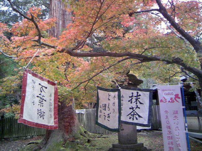 久しぶりに奈良でお仕事でした。<br /><br />早めに終わったので、春日大社へ詣でてきました。