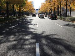 黄金色に輝く大阪のメインストリート 「御堂筋 イチョウ並木」