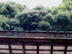 2010秋、宇治上神社(3):11月20(3):宇治上神社、拝殿、立砂、御神木の欅、桐原水、春日社、狛犬、稲荷社
