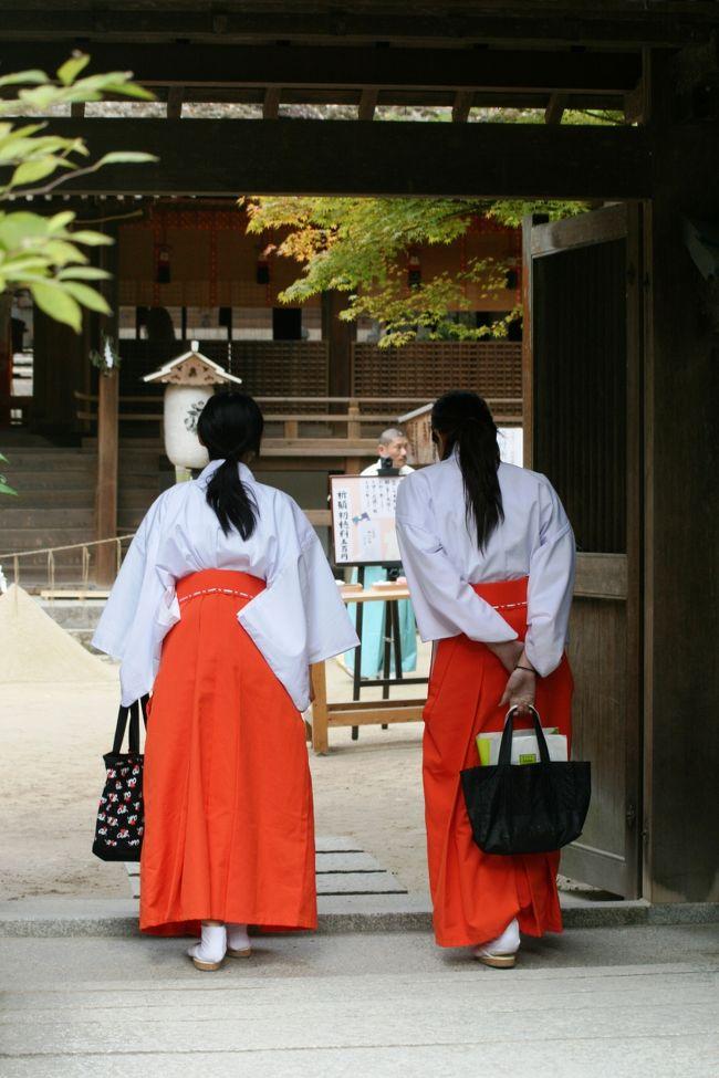 17箇所の古都・京都の世界遺産の一つ、宇治上神社紹介の締め括りです。宇治上神社見学の後、直ぐ近くの宇治神社にも立寄りました。