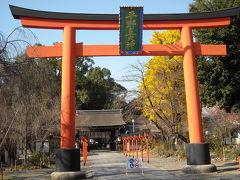 平野神社:京都ってお寺だけじゃないんですね!
