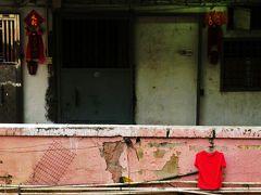 5 活魚しか口にしない心意気を市場に見て唸り、幸せの黄色いカレーに再会した雨の香港 HongKong ホンコン彷徨 及び女人街の十勝豚丼が美味かった件についての考察。