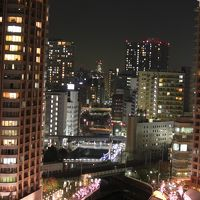 晩秋の夜桜
