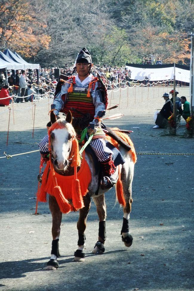 町田ではじめて開催される「町田時代祭り」を見に行ってみました。会場は芹ケ谷公園で、11時に開催されると聞いていたので、その少し前に会場に着くと、もうたくさんの観客で身動きができないほどでした。<br /><br />この日は武者行列と流鏑馬が行われましたが、流鏑馬は初めて見ました。疾走する馬から矢を的に当てるのは至難の業と思えましたが、うまく当てる旗手もいるのですね。驚きました。<br /><br />*日本各地で行われている流鏑馬を紹介するホームページがあります。<br />  https://sites.google.com/site/yabunavi/