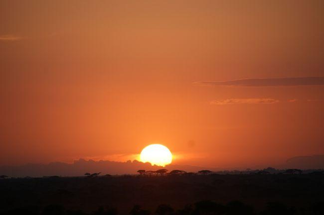 タンザニアでは、ンゴロンゴロ自然保護区、セレンゲティ国立公園、マニヤラ湖国立公園と3ヶ所回りました。<br />セレンゲティの後はマニヤラ湖です。マニヤラ湖は大地溝帯の底にできたソーダ性の湖だそうですが、さてマニヤラ湖ではどんな動物に会えるのでしょうか。。。