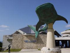 レンタカーで沖縄美ら海水族館へ