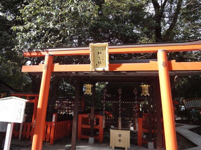 京都一日観光です。<br />時間がないので初めてタクシーで移動するという贅沢な弾丸旅でしたが<br />だいぶ時間を効率的に使えました!<br />宿泊は京都三条にある「加茂川館」です。