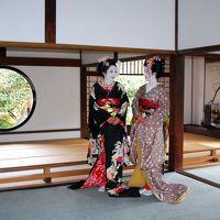 そうだ 京都、行こう。  2014年は源光庵