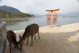 12. 日本三景の一、宮島へ 其の一