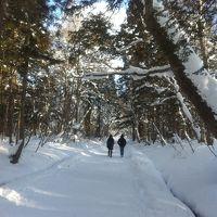 雪の戸隠神社へ初詣♪
