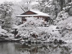 京都は大晦日から元旦は珍しく積雪でした。