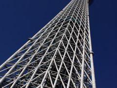 見事な建築美!東京スカイツリー&東京ジャーミイ☆冬デコレーション東京☆