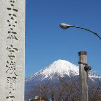 さわやかウォーキング~富士宮 初詣ウォーキングと富士宮やきそば