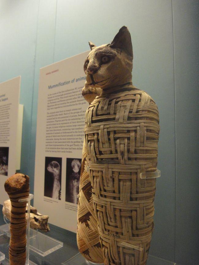 <br />大英博物館といえばロゼッタストーン・パルテノン神殿の彫刻群<br />そしてミイラコレクションが三大お宝と言われるほどで古代文明<br />ものが好きな私にとって今回の旅行はここが最大の目的地である。<br /><br />興味分野の偏りによりエジプトゾーン中心、ミイラの写真が多く<br />なっていますが貴重な歴史的資料として物言わぬ彼らは多くの事<br />を語りかけてくれています。<br />今から約5千年も前にこのような文明が発達していたと思うと<br />驚かずにはいられませんでした。<br /><br />旅行記というよりミイラのお話です。。。<br /><br />*****************************************************<br />※ こちらの旅行記はミイラの特性上刺激的な画像も含まれて<br />いますのでご自身の判断によりご覧ください。<br />*****************************************************<br /><br />