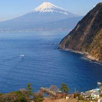 富士山のビューポイント・・・煌めきの丘(沼津市井田地区)