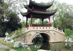 上海の大観園