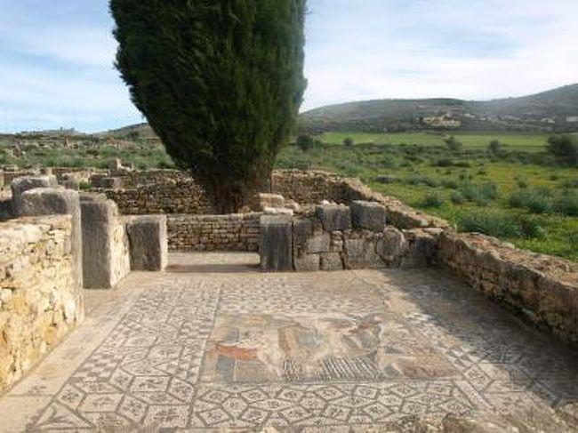 年末年始の旅行記もこれで一応終わり。歴史でならった古代ローマの遺構がアフリカで出会うとは。アフリカももうろっこじゃなかった6カ国になったのかな。