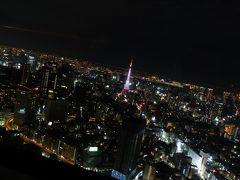 ≪ダイジェストというか目次≫ 2011初春 東京旅行 2011年1月