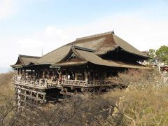 京都、冬の旅  2回目(清水寺・高台寺・知恩院・八坂神社・祇園)