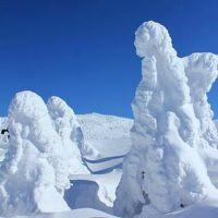 パノラマ樹氷原