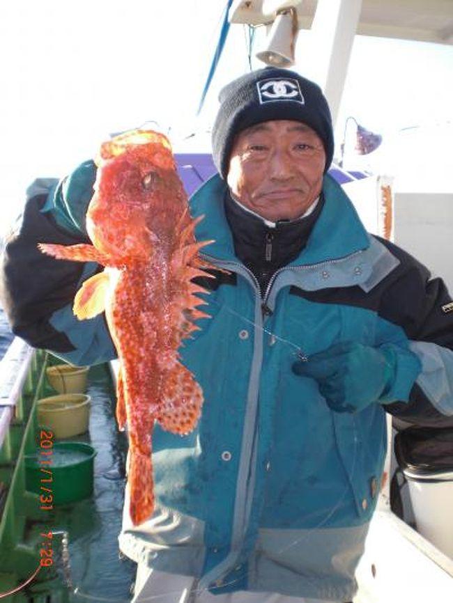 オニカサゴ・ヤリイカに出船中<br />真冬の釣物ですが<br />刺身で良し<br />しゃぶしゃぶで良し<br />鍋で良し<br />釣師の喜ぶ顔が励みです<br />出船時増殖中