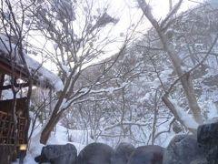 秘境の雪景色 湯西川温泉 Vol2(第1日目 午後) 伴久ホテルの絶景お部屋と露天風呂♪