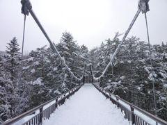 秘境の雪景色 湯西川温泉 Vol7(第2日目 午後) 湯西川温泉のかまくら祭りと最古のおそば屋 スペーシアで帰京