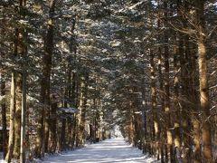 今年もちょっとだけSKI 2011年冬の軽井沢